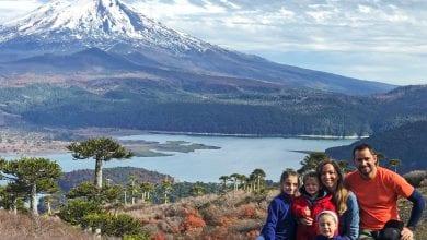 Imagen del Parque Conguillio de Panoramas con niños
